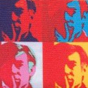 ANDY WARHOL SCREENS